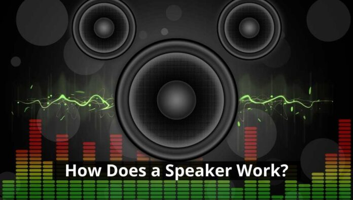 How Does a Speaker Work