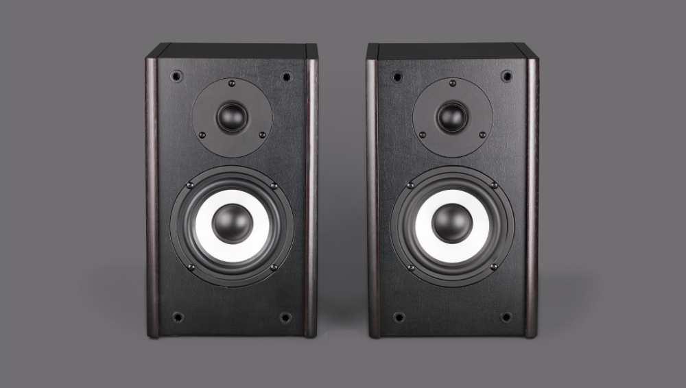 Examine the speaker physically
