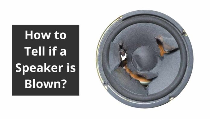 How to Tell if a Speaker is Blown